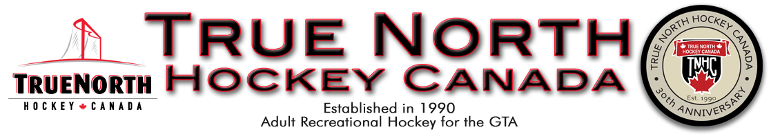Adult Rec Hockey for the GTA